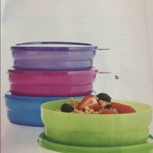 Brand New Tupperware Cereal Bowls And Seals